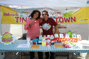 img_3481_tinytofutown_merch_volunteer_benkam